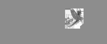 main jim logo